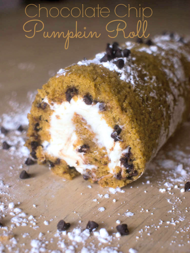 Chocolate Chip Pumpkin Roll