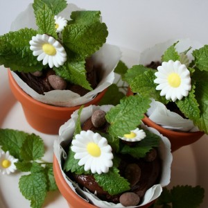 brownie flower pots