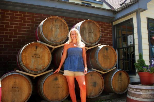 Tutorials u0026 Tips Link Party {19}: Williamsburg,VA Trip ...