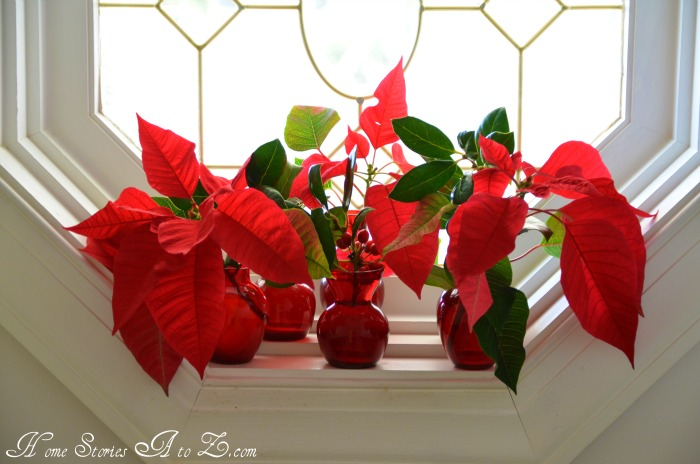 7 Inspiring Kid Room Color Options For Your Little Ones: Decorating With Poinsettias {poinsettia}