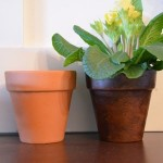 How to Easily Age Terra Cotta Pots {cotta}