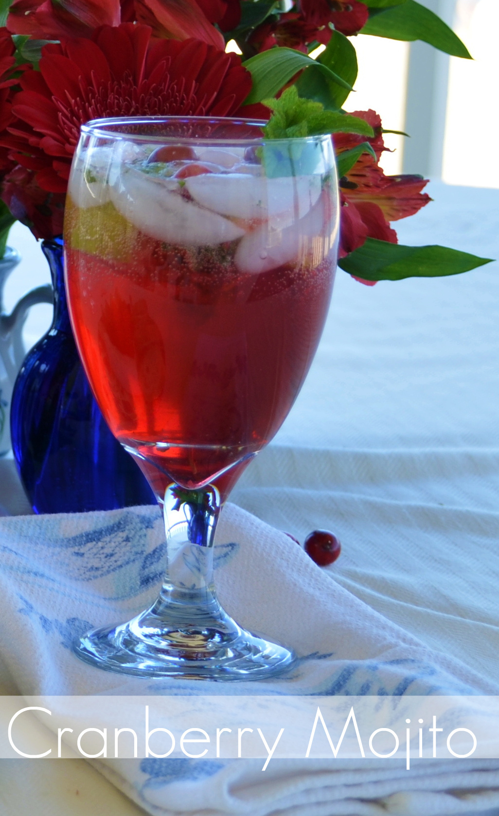 Simply Cranberry Cocktail & Hors d'oeuvre Recipes - Home ...