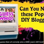 Who the Heck is THAT: Guess the DIY Blogger $300 Lowes Give Away