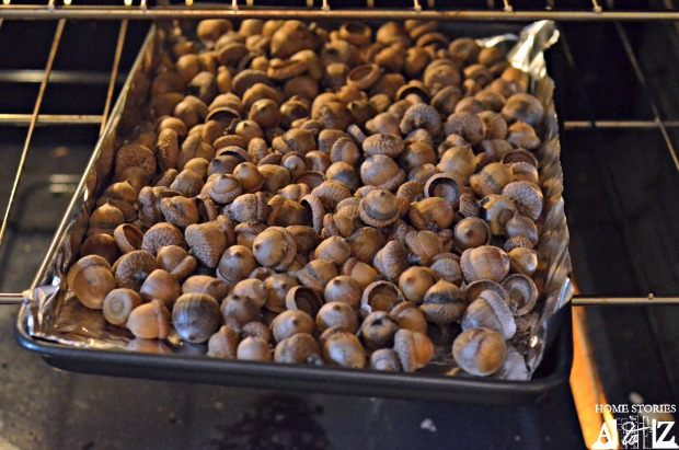 bake acorns for crafts