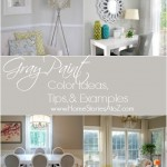 Gray Paint Color Ideas, Tips, and Examples