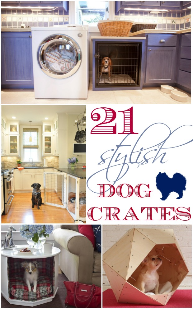 pretty dog crates