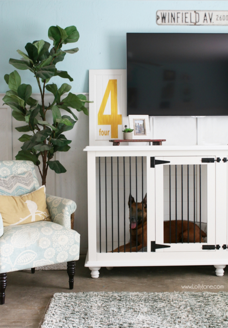 Dog Furniture Crate by Lolly Jane