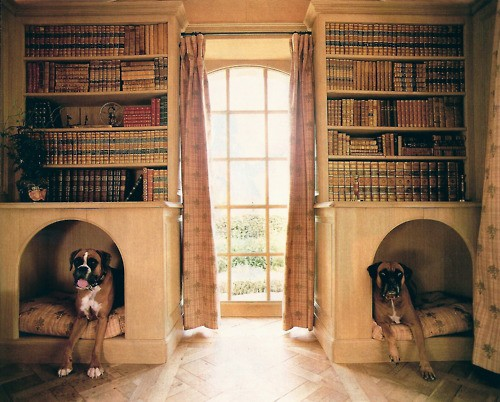 dog crate bookshelves - 21 Stylish Dog Crates - Home Stories A To Z