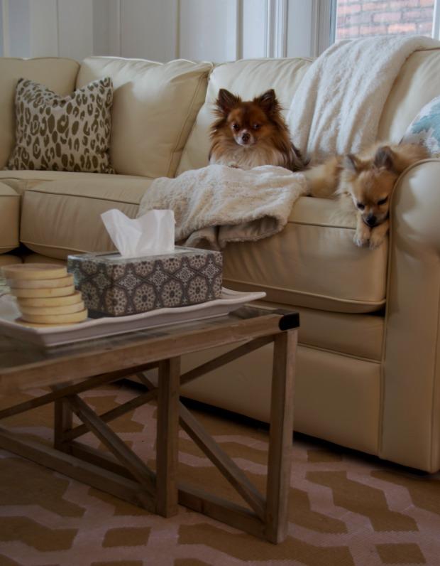 living room kleenex