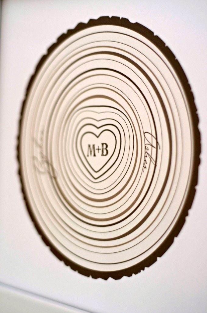 Amazing family tree rings