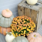 Urban Farmhouse Fall Porch