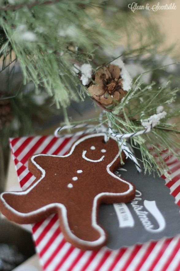 Cinnamon-Christmas-Ornaments-recipe
