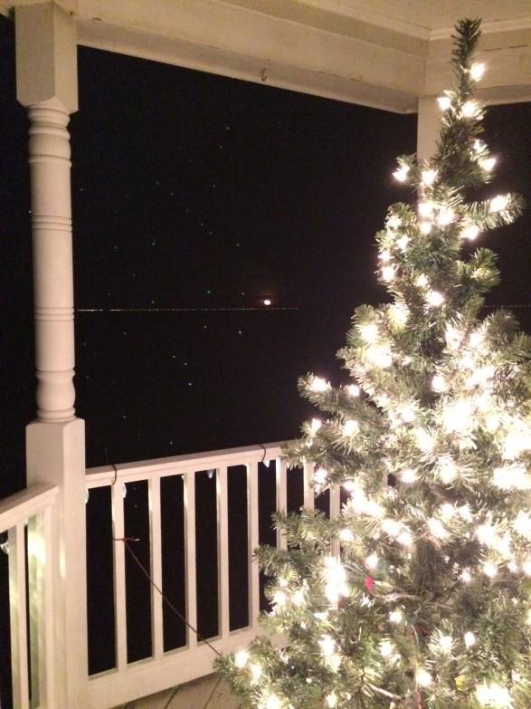moon christmas tree
