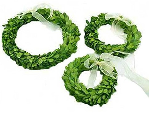 boxwood wreath set