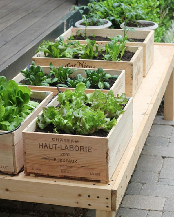 Wine box raised garden planters