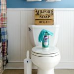 Spring Cleaning: How to Clean a Toilet