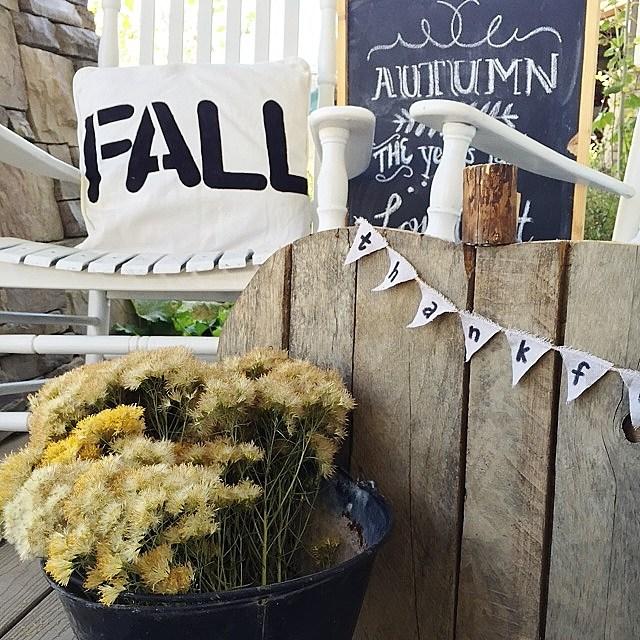 Fall craft Toss Pillows Twelve on Main