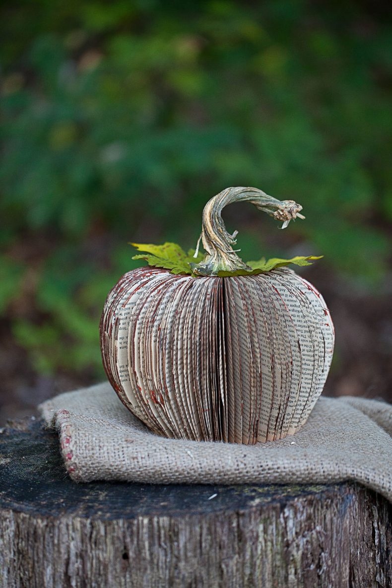 Pumpkin Book Art Fall Craft