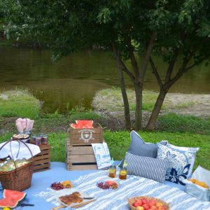 family picnic ideas-24