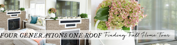four-generations-one-roof