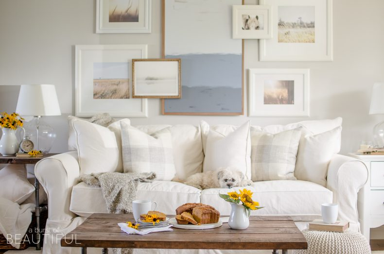 Fresh  COZY AND QUAINT FALL BY A BURST OF BEAUTIFUL