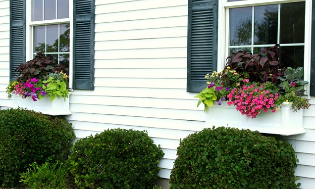 10 Gorgeous Window Box Planters How To Style Amp Build