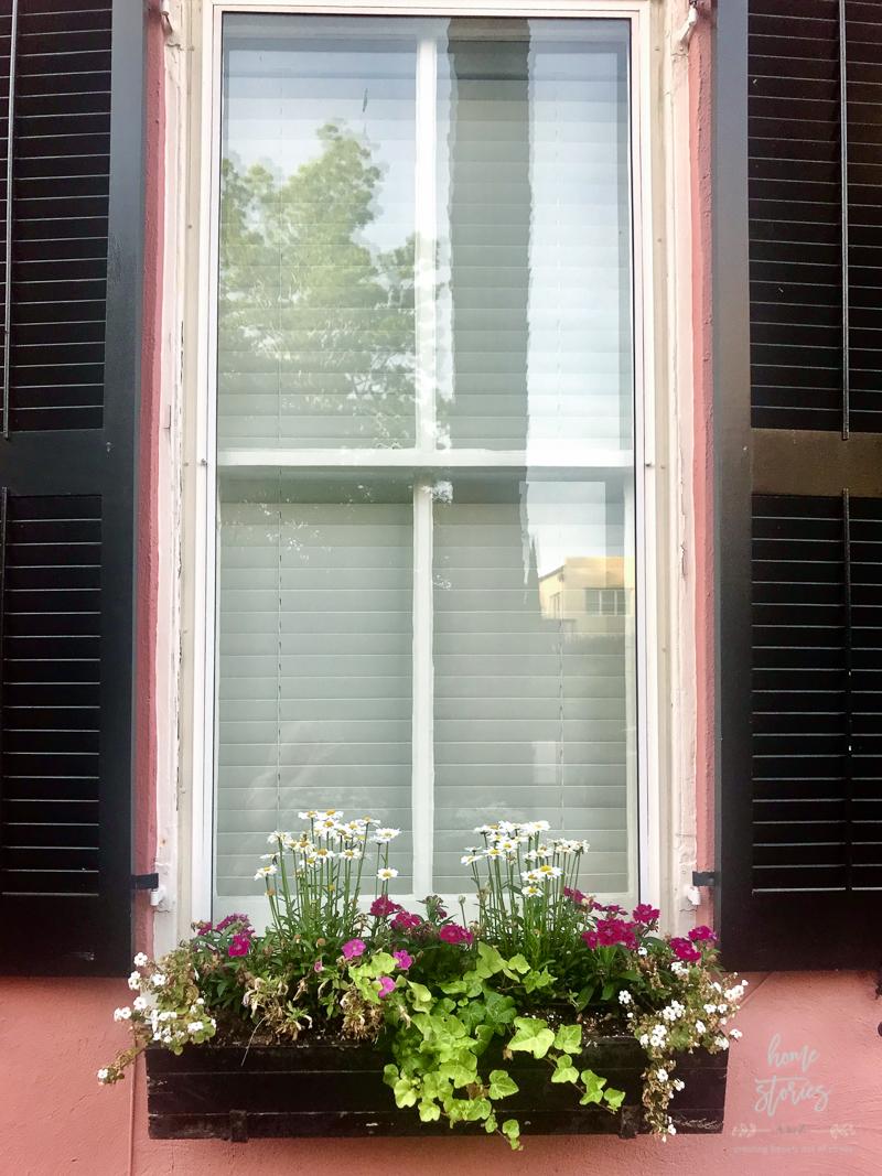flower box ideas Charleston flower boxes