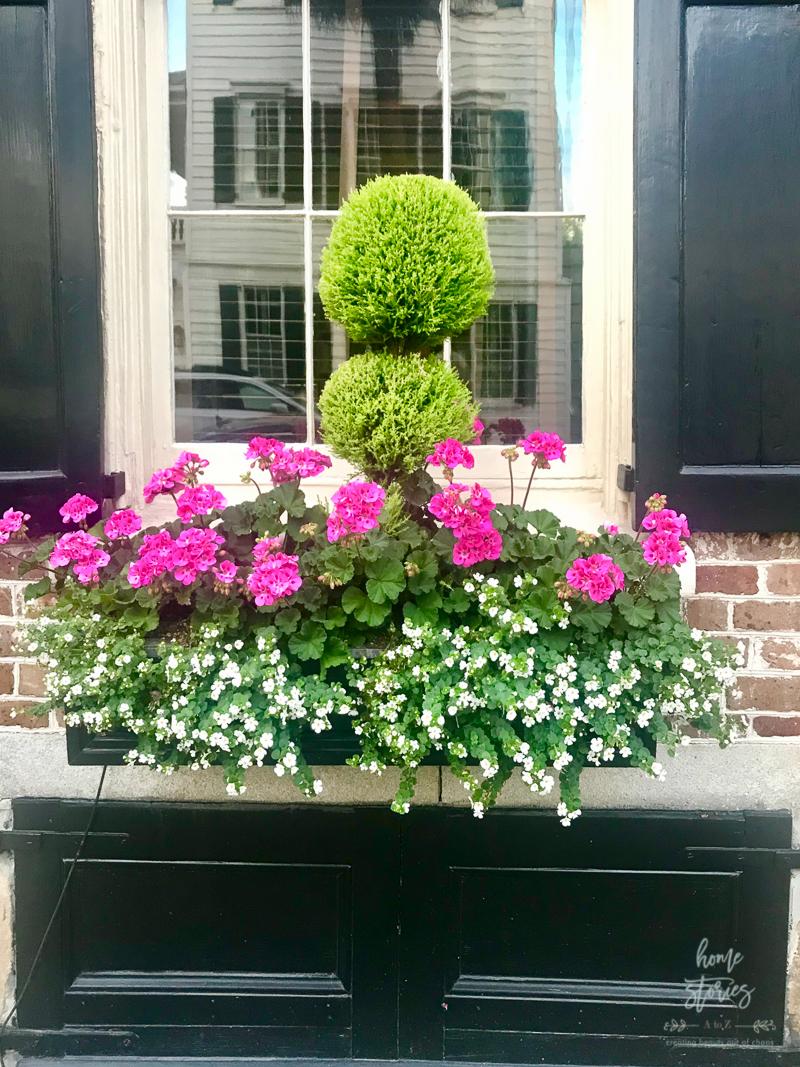 Flower Box Ideas: Window Flower Box Inspiration from ...