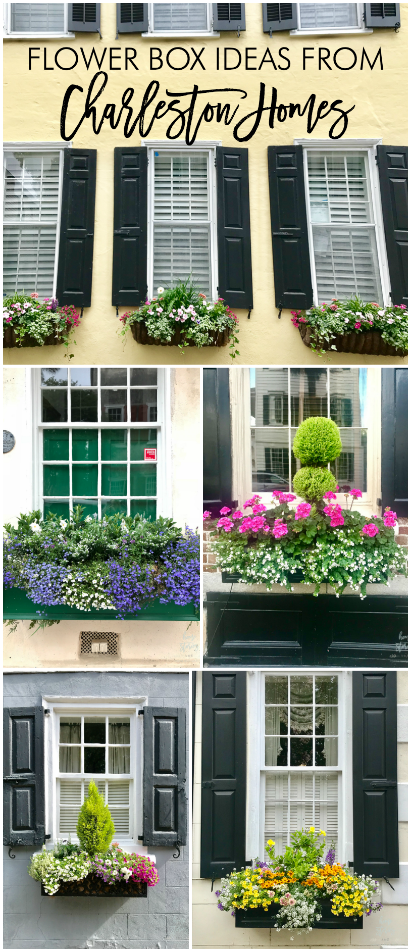 flower box ideas flower box inspiration charleston flower boxes
