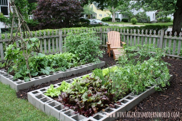 Above Ground Garden Ideas - Cinder Block Garden by Vintage Kids Modern World