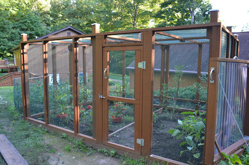 Above Ground Garden Ideas - Garden Enclosure Idea by Clover & Thyme
