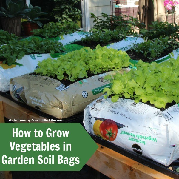 Above Ground Garden Ideas - Grow a Garden in Soil Bags by Ann's Entitled Life