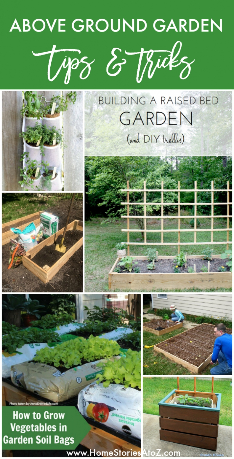 Above Ground Garden Tips & Tricks to Help Your Garden