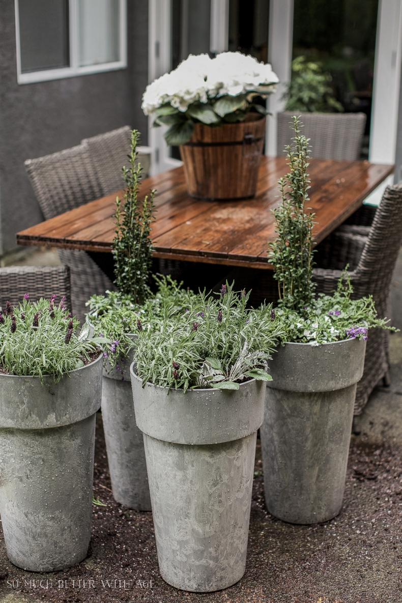 Unique Container Garden Ideas for your Porch or Patio - Best Tip for Filling Large Outdoor Planters by So Much Better With Age