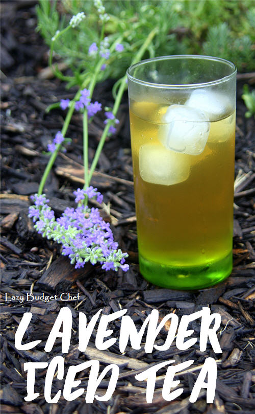 80+ Best Summer Recipes - Lavendar Iced Tea by Lazy Budget Chef