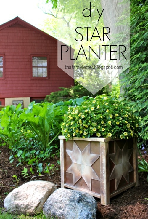 How to Build a Wooden Planter - DIY Star Planter by Jaime Costiglio
