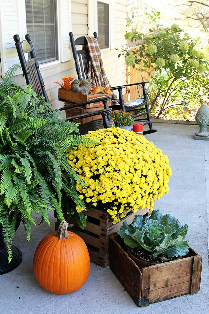 Traditional Fall Porch Decor Ideas - Front Porch Fall Decor by House of Hawthornes