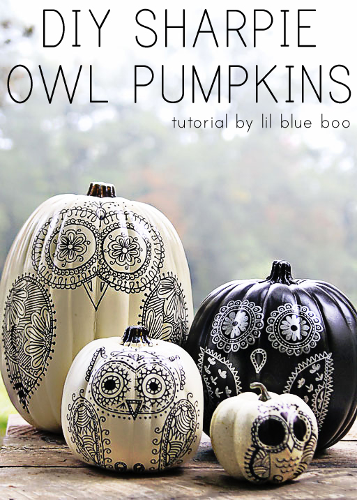 DIY Pumpkin Painting Ideas - DIY Sharpie Owl Pumpkins by Lil Blue Boo