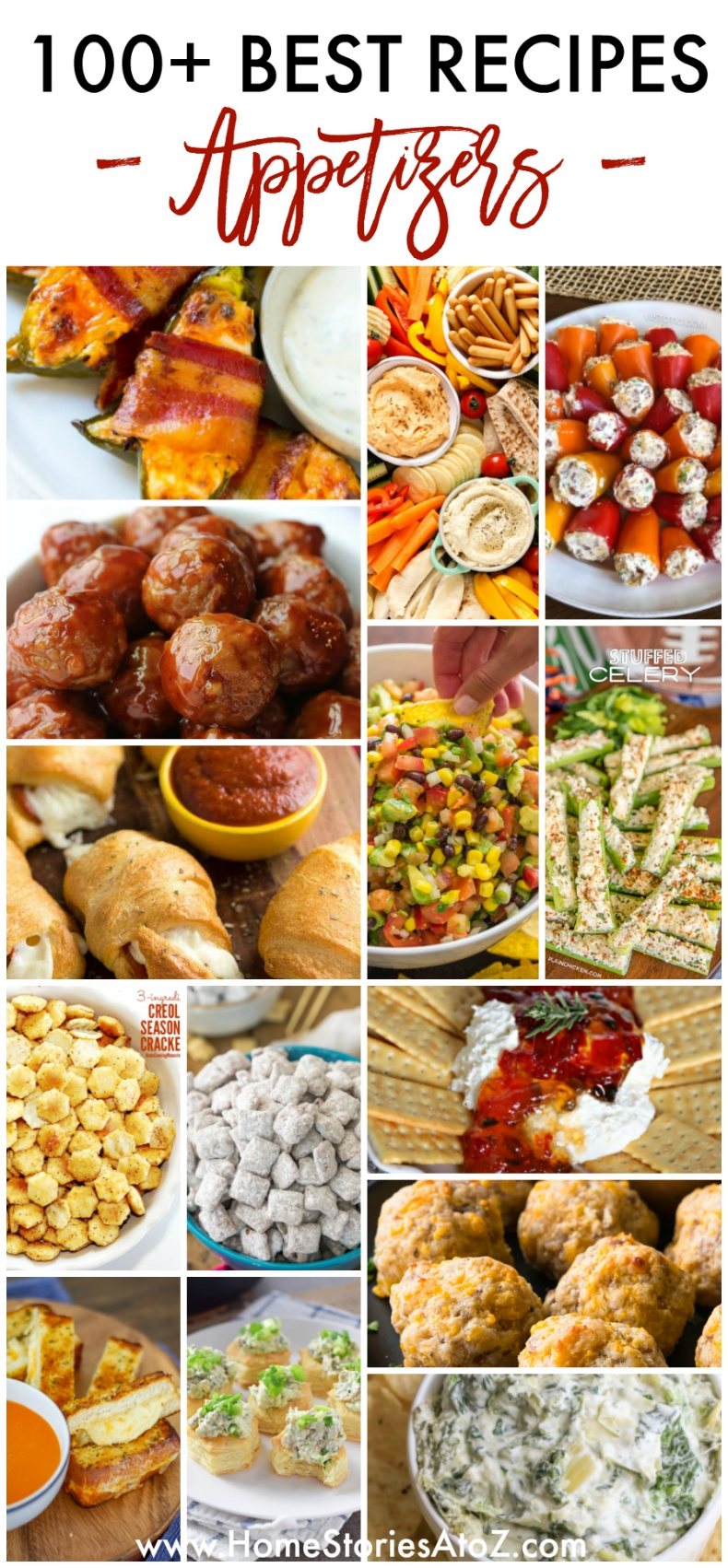 100+ Best Appetizer Recipes Meats, Dips, Cheeses, Vegetables, Breads, Snacks, and Air Fryer Recipes