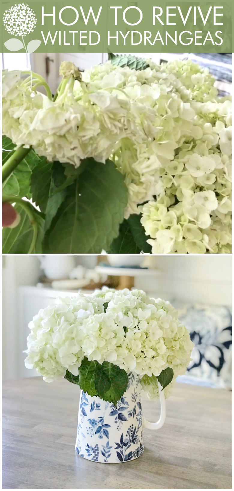 All About Hydrangeas - Tips to Reviving Wilted Hydrangeas by Home Stories A to Z
