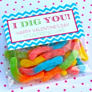 Valentine Printable Ideas - I Dig You by Bloom Designs