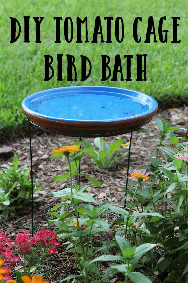 Bird Baths, Bird Feeders, and Bird Houses - DIY Tomato Cage Bird Bath by My Life Abundant