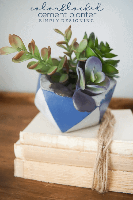 DIY Planter Ideas - Color Blocked Cement Planter by Simply Designing