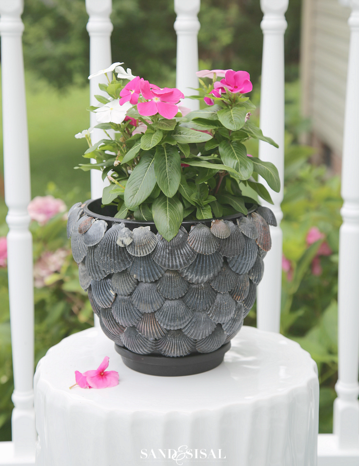 DIY Planter Ideas - DIY Shell Planter by Sand & Sisal