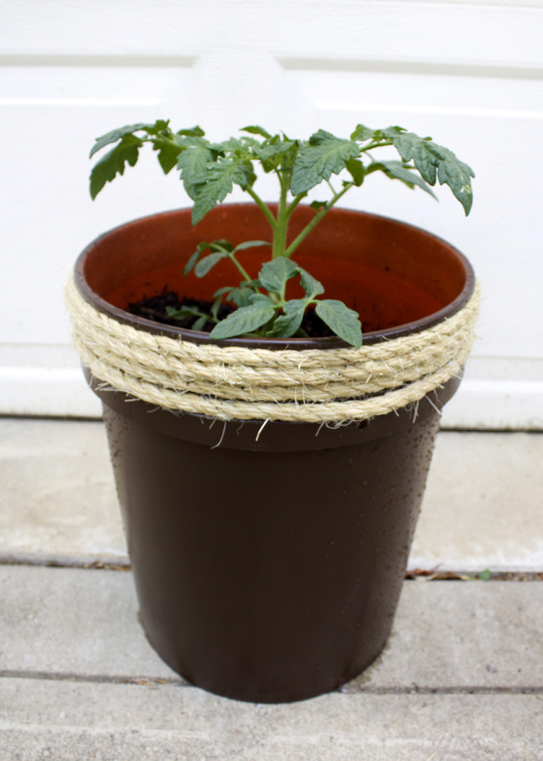 DIY Planter from 5 Gallon Bucket by Tag & Tibby