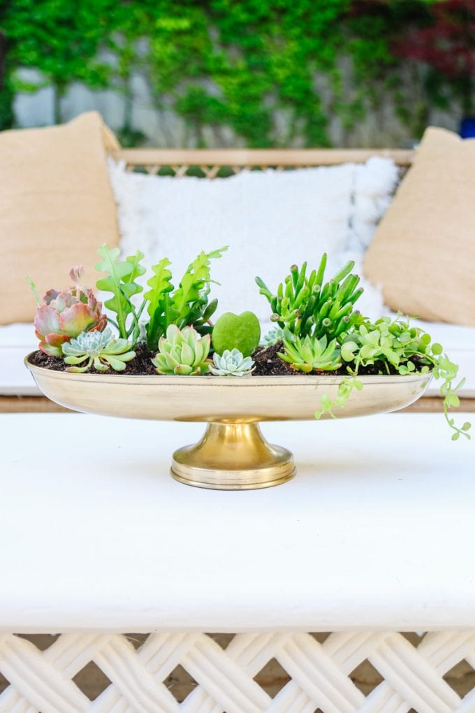 DIY Succulent Planter by Modern Glam