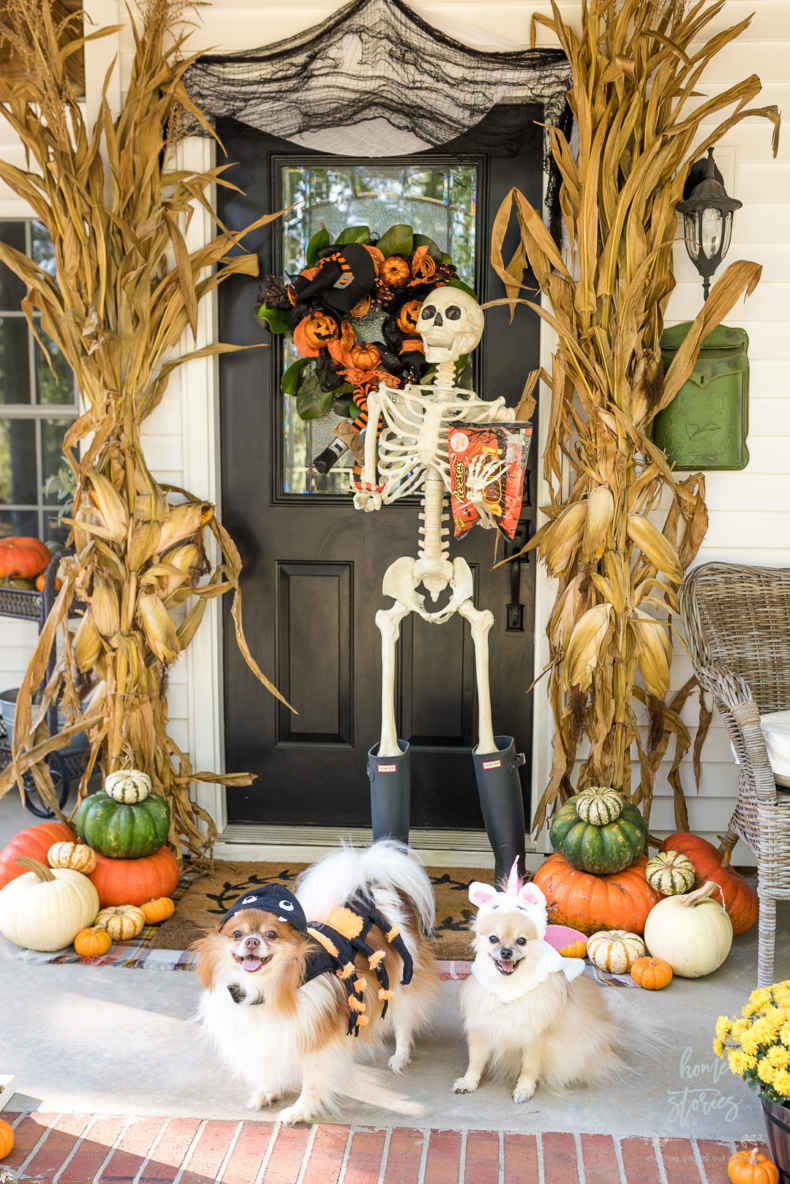 Halloween Porch and Door Ideas - Fall into Halloween by Home Stories A to Z