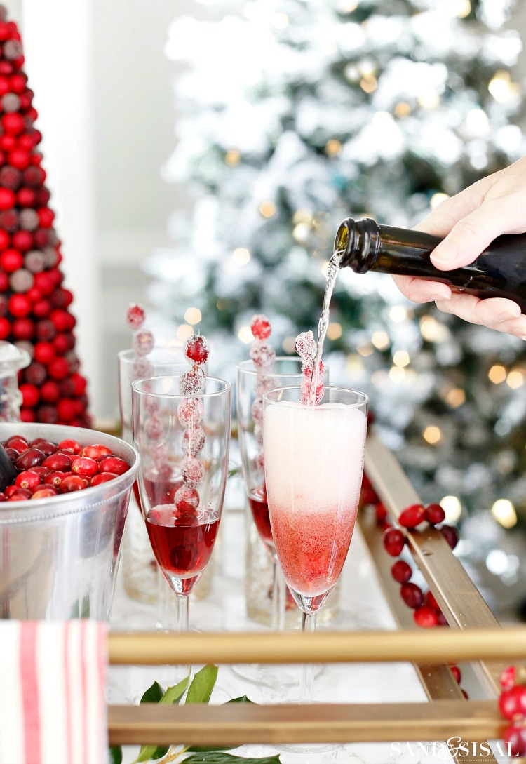Cranberry Recipes - Cranberry Spritzer by Sand & Sisal