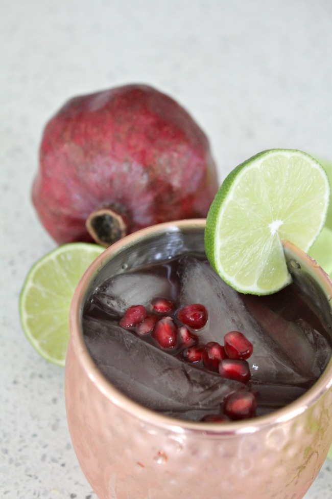 Holiday Drink Recipes - Christmas Moscow Mule by Food Wine Sunshine